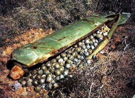Фейк: фото неразорвавшейся кассетной бомбы под Донецком