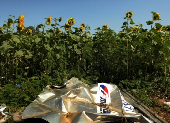 MH17 anniversary: In Russia, conspiracy theories on downed plane still find believers