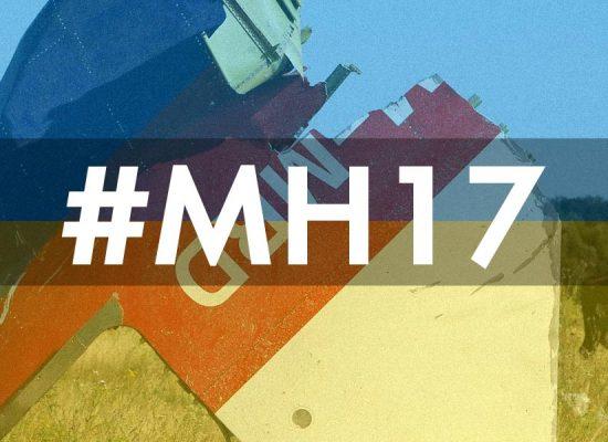 MH17. Хроники горящей шапки