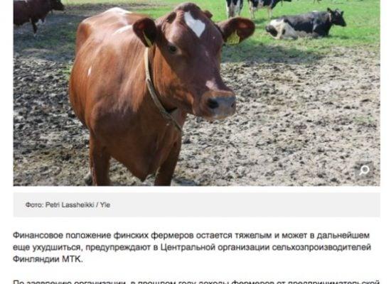Фейк: Финские фермеры страдают из-за российских санкций