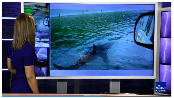 Not this shark again—The Weather Channel social media debunk segments that unfortunately don't use the visual displacement technique or any visual disclaimer at all. It seems likely that many folks (perhaps with the audio turned down, or glancing up in an airport) might have gotten the wrong impression about this shark photo, a perennial hoax