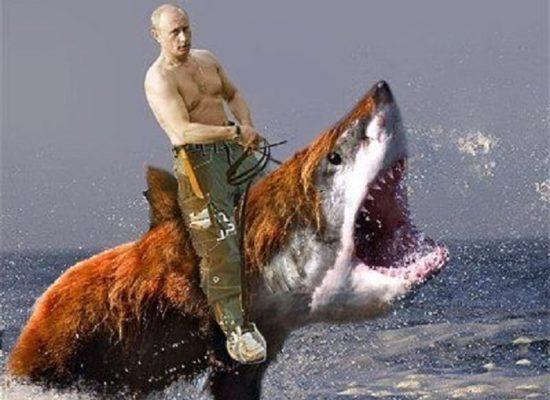 Игорь Яковенко: Старик и рыба