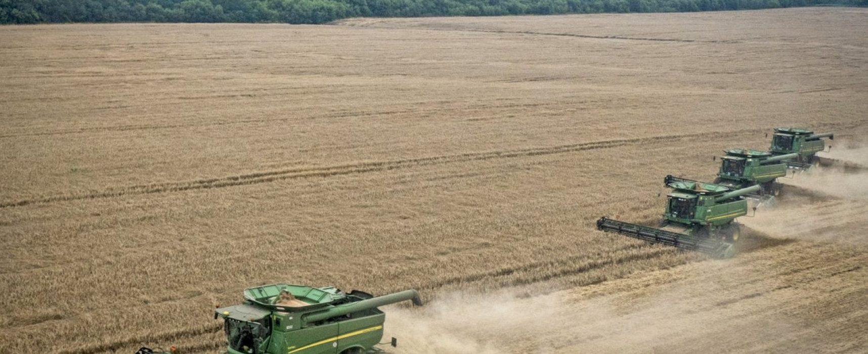 Fake: Russische Bauern profitieren von schlechter Getreideernte in der Ukraine