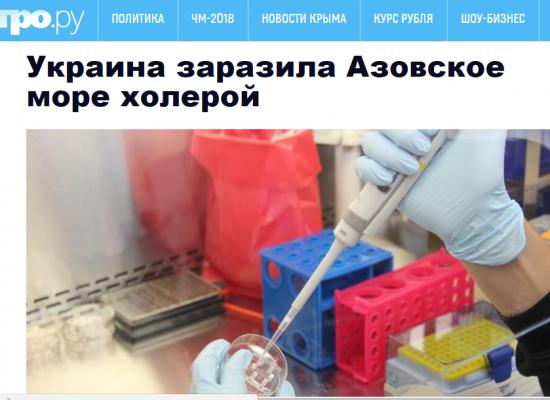 """Falso: En el mar de Azov se encuentra el """"virus"""" del cólera"""