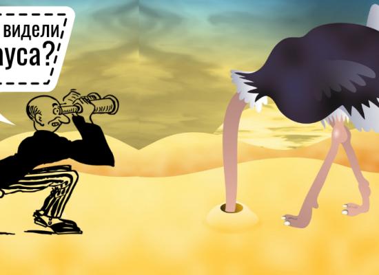Теорії змов: неможливо побачити страусів, що ховають голови в пісок