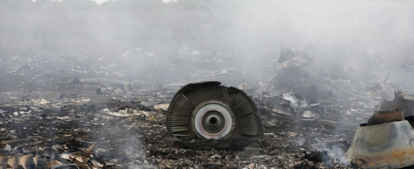 РИА «Новости» и немецкий частный детектив, расследовавший гибель MH17, попытались возродить фейковую версию об украинском истребителе и покушении на Путина