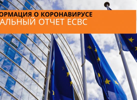 Спеціальний звіт Європейської Служби Зовнішніх Зв'язків (ЄСЗЗ): дезінформація щодо коронавірусу – короткий огляд інформаційного середовища