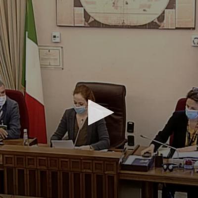 Audizione c/o Commissione Affari Esteri