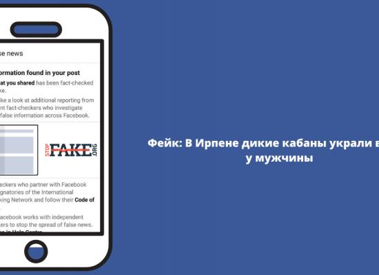 Fake: In der Ukraine haben Wildschweine einen Mann bestohlen